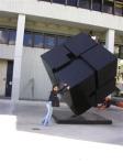 FIU Cube