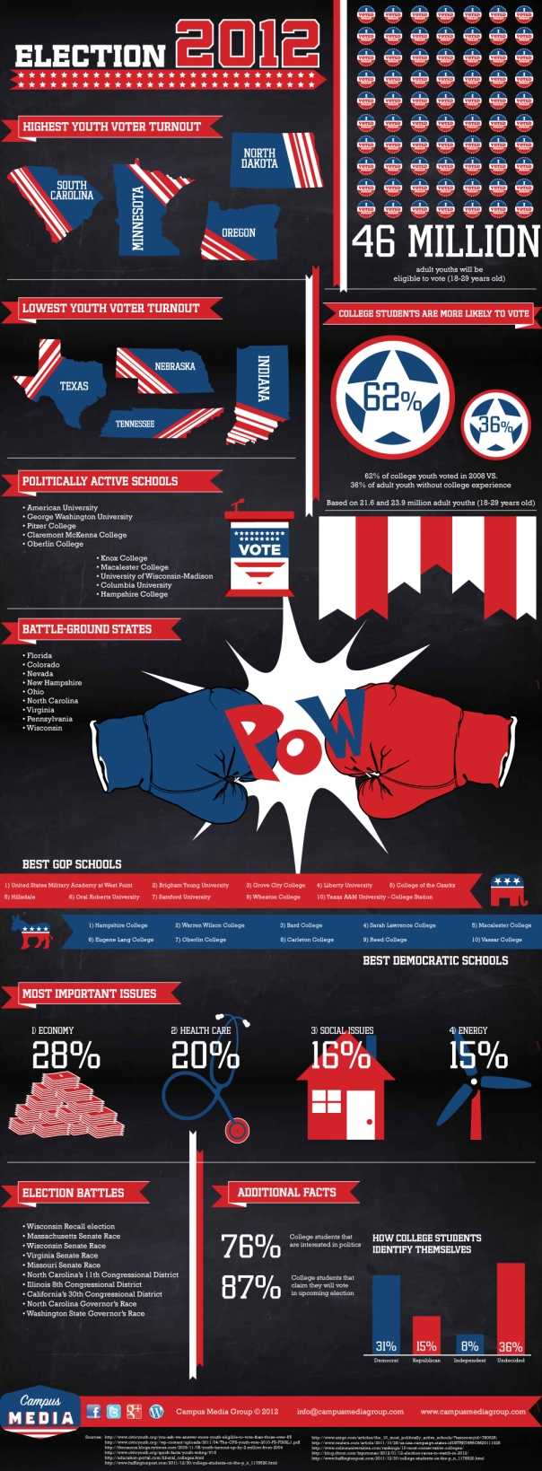 2012 Youth Vote Statistics Infographic
